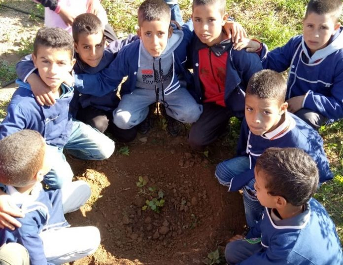 LET'S MAKE IT GREEN ON JANUARY 20TH: HIGH ATLAS FOUNDATION WILL PLANT THOUSANDS OF TREES