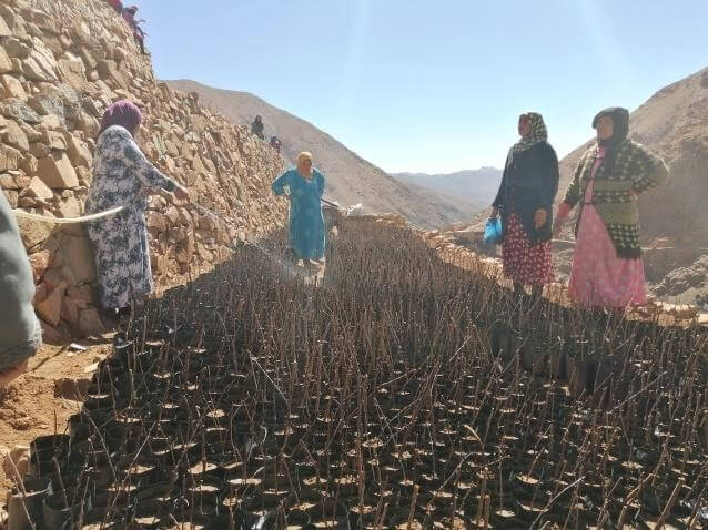 RURAL WOMEN IN THE HIGH ATLAS CONTRIBUTE TO CLIMATE CHANGE REDUCTION BY PLANTING FRUITS TREES