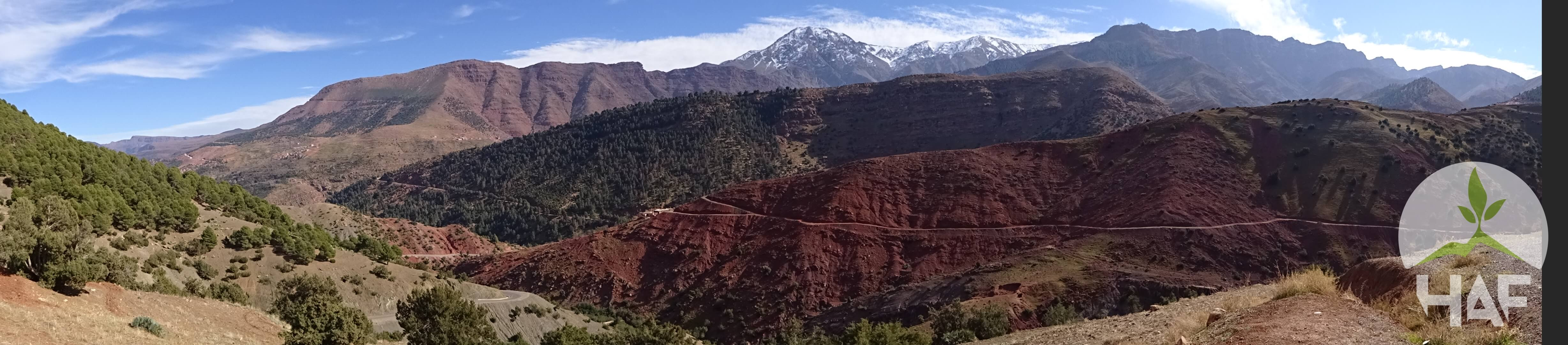 A PERSONAL JOURNEY WITH THE HIGH ATLAS FOUNDATION